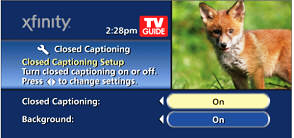 Closed Captioning and Background Options display