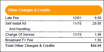 Other bill charges and credits are shown.