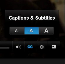 Closeup of option for choosing caption text size