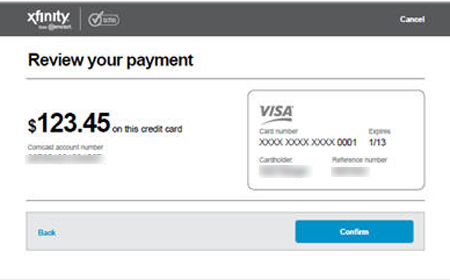 Review Your Payment window showing amount of payment and type of payment