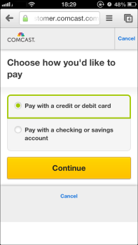 Choose how you'd like to pay window: choose credit or debit card, or checking or savings account