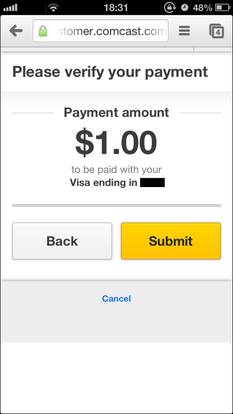 Verify payment window showing amount of payment entered
